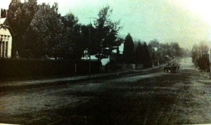 Saratoga Avenue early 1890s looking East