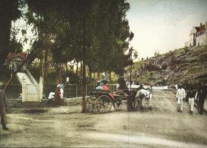 Looking north up Harrow Road 1900s