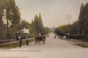 Saratoga Avenue 1900s