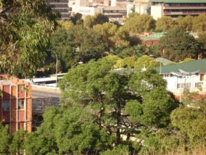 View of Doornfontein and UJ (old Wits Tech) from the foundations