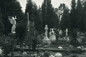 Braamfontein Cemetery 1890s