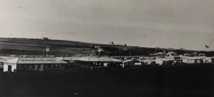 View of the show grounds in 1897 showing and under-developed Parktown in the background