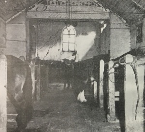 Inside of the Presbytery showing horse stalls where pews once were